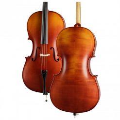 Höfner H5 Cellogarnitur