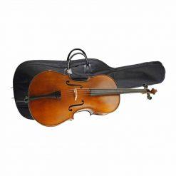 Höfner H8 Cellogarnitur